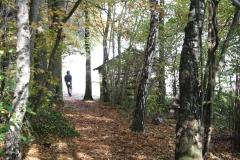 Schoonbron-Engwegen-062-Hut-aan-de-bosrand