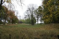 Strucht-Gerendal-031-Herfstlandschap-met-bomen