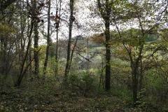 Strucht-Gerendal-032-Herfstlandschap-met-bomen