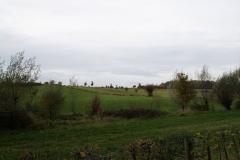 Strucht-Gerendal-085-Herfstlandschap-met-bomen
