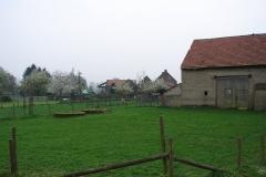 Maasband-61-Bloesem