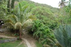 St.-Maarten-0793-Loterie-Farms-Overzicht