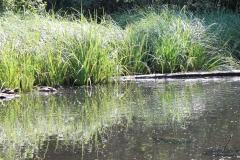 Huls-e.o.-168-Waterplas-bij-Simpelveld