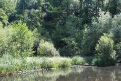 Huls-e.o.-170-Waterplas-bij-Simpelveld