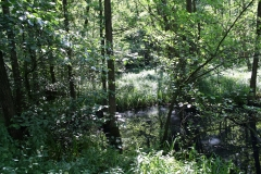Huls-e.o.-173-Waterplas-bij-Simpelveld