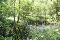 Huls-e.o.-174-Waterplas-bij-Simpelveld