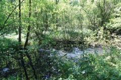 Huls-e.o.-176-Waterplas-bij-Simpelveld