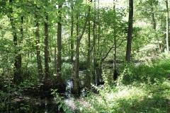 Huls-e.o.-178-Waterplas-bij-Simpelveld