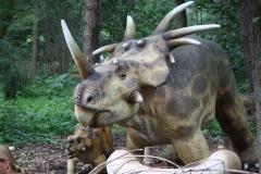 Dierenpark-Amersfoort-244-Triceratops