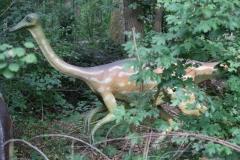 Dierenpark-Amersfoort-251-Ornithominus