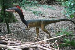 Dierenpark-Amersfoort-273-Coelophysis
