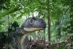 Dierenpark-Amersfoort-280-Ceratosaurus