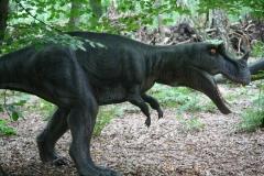 Dierenpark-Amersfoort-282-Ceratosaurus