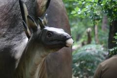 Dierenpark-Amersfoort-304-Stegosaurus