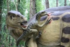 Dierenpark-Amersfoort-320-Deinonychus