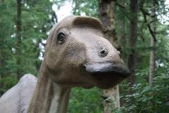 Dierenpark-Amersfoort-333-Maiasaurus