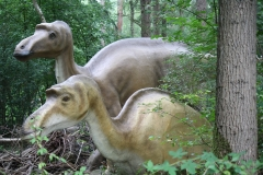 Dierenpark-Amersfoort-335-Maiasaurus
