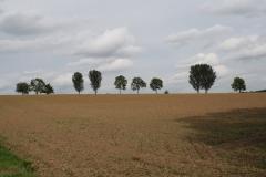 Kerkrade-118-Vergezicht-met-akkers-en-bomen