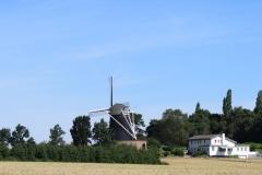 Trintelen-Eys-042-Vergezicht-met-windmolen