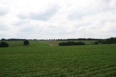 Ulestraten-en-Waterval-018-Landschap-met-akkers