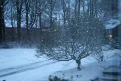Winter-2008-02