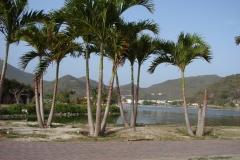 St.-Maarten-1186-Philipsburg-Salt-Lakes