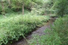 Eys-Eyserbeek-5-bij-Waterwingebied-Roodborn