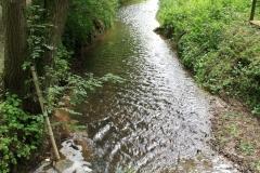 Eys-Eyserbeek-6in-Waterwingebied-Roodborn