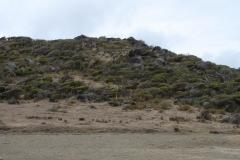 St.-Maarten-081-Natuurreservaat