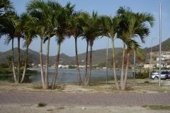 St.-Maarten-1185-Philipsburg-Salt-Lakes
