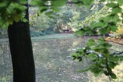 1_Ravensbosch-001-Vijver