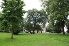 Haarlem-Ripperdapark-1