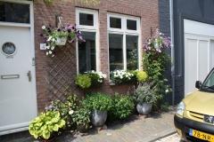 Haarlem-207-Voortuintje-in-Groot-Heiligland