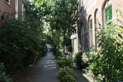 Haarlem-277-Korte-Houtstraat-met-tuintjes