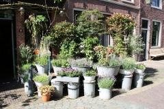 Haarlem-452-Voortuin-in-de-Breestraat