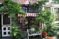 Haarlem-504-Voortuintje-in-Korte-Houtstraat
