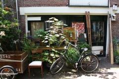 Haarlem-507-Voortuintje-in-Korte-Houtstraat