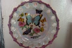 St.-Maarten-0858-The-Butterfly-Farm-Vlinderbordje