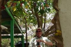 St.-Maarten-0893-The-Butterfly-Farm-Spiegel-met-fotograaf