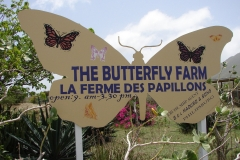 St.-Maarten-0963-The-Butterfly-Farm-Uithangbord